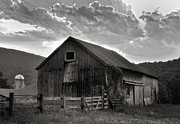 Fences Prints - Caseys Barn-Black and White  Print by Thomas Schoeller