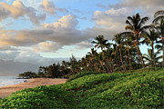 Kamaole Beach Art - Charley Young Beach Maui by Pierre Leclerc
