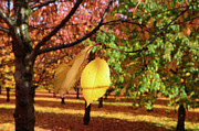 Where To Buy Magic Autumn Color On Canvas Posters - Cheery Tree Sheet Poster by Bruno Santoro