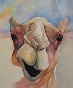 Pig Prints Paintings - Chevy the Camel by Gayle  George