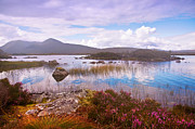 Jenny Rainbow - Colorful World of Rannoch Moor. Scotland