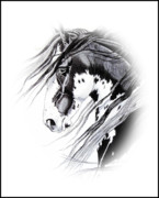 Horse Drawing Prints - Commanche Print by Cheryl Poland