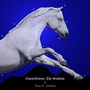 Constellation The Stallion Fine Art Print by Diane C Nicholson