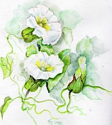 Nature Study Painting Metal Prints - Convolvulus Metal Print by Angelina Whittaker Cook
