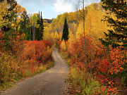 Autumn Country Road Posters - Country Road in Autumn Poster by Leland Howard