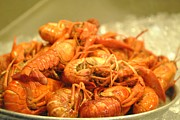 Crawfish Art - Crawdad Delight by Nimmi Solomon