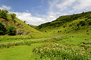 Hills Framed Prints - Cressbrook Dale near to Wardlow Framed Print by Rod Johnson