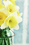 Canning Framed Prints - Daffodils and Mason Jar Framed Print by Stephanie Frey