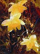 RC DeWinter - Daffs Gone Goth