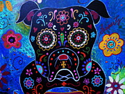 Pristine Cartera Turkus - Day Of The Dead Bulldog