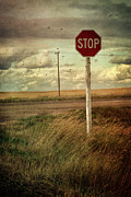 Stop Posters - Deserted red stop sign on the prairies Poster by Sandra Cunningham