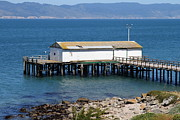 Wingsdomain Art and Photography - Dock At Point Reyes Calfornia . 7D16070