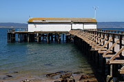 Wingsdomain Art and Photography - Dock At Point Reyes Calfornia . 7D16073