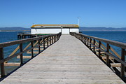 Wingsdomain Art and Photography - Dock At Point Reyes Calfornia . 7D16123