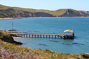 Wingsdomain Art and Photography - Dock At Point Reyes Calfornia . 7D16133