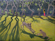 Andrew Macara - Dog and Monkey