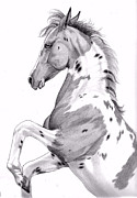 Horses Drawings - Double Hearts Dandy by Cheryl Poland