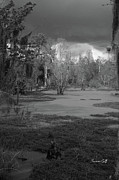 Suzanne Gaff - Drama in the Swamp II-black and white