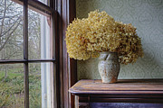 Protestantism Prints - Dried Flowers In Window Light Print by Douglas Orton