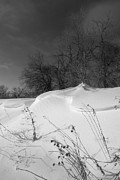 Snow Drifts Prints - Drifts Print by Rick Rauzi