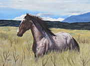 Melody Perez Metal Prints - Drinker of the Wind Metal Print by Melody Perez