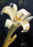 Maria Soto Robbins Art - Easter Lilly by Maria Soto Robbins