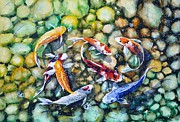 Harmony  Painting Posters - Eight Koi Fish Playing with Bubbles Poster by Zaira Dzhaubaeva