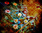 Flowers Photos - Electric Daisies by Arne Hansen