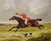 John Frederick Herring Snr - Encouraging Hounds