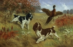 Illustration Framed Prints - Energetic English Springer Spaniels Framed Print by Walter A. Weber