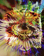 Passiflora Digital Art Metal Prints - Eyeare Metal Print by Dana Vallery