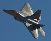 Usaf Framed Prints - F-22 Fly By Framed Print by Tim Mulina