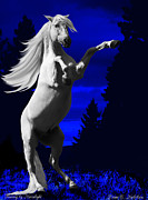 Fantasy By Moonlight Fine Art Print by Diane C Nicholson