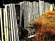 Fence Row Photos - Fence Abstract by Joe JAKE Pratt