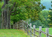 Cooperstown Photos - Fenimore Fence by Beth Benjamin