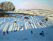 Andrew Macara - Fields of Shadows