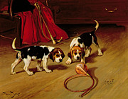 Wright Barker - First Introduction