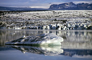 Icebergs Photos - Floating icebergs by Sami Sarkis