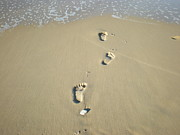 Walking On Sand Prints - Footprints in the Sand Print by Marlene Challis