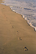Suzanne Gaff - Footprints Left Behind