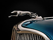 Collector Hood Ornament Digital Art Prints - Ford Blue Dog Print by Douglas Pittman
