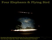 Flying Reliefs - Four Elephants And Flying Bird  by Phillip H George