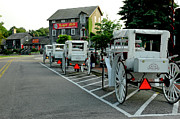 LeeAnn McLaneGoetz McLaneGoetzStudioLLCcom - Frankenmuth Michigan Carriages at the...