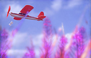 Richard Piper Metal Prints - Free Flight Metal Print by Richard Piper