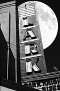 Wingsdomain Art and Photography - Full Moon Over The Lark - Larkspur...
