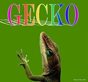 Maria Urso - Artist and Photographer - Gecko 2
