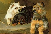 George Wiliam Horlor - Give a Poor Dog a Bone