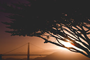 Golden Gate Bridge Sunset Fine Art Print by Ariane Moshayedi
