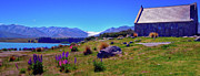 Shepherd Island Posters - Good Shepherd Church at Lake Tekapo Poster by Harry Strharsky
