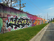 Anne Cameron Cutri - Graffiti Lane